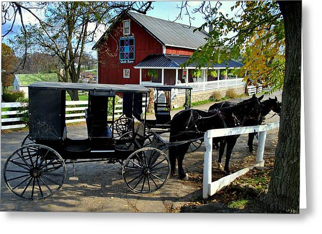 Amish Country Horse And Buggy Greeting Card by Frozen in Time Fine Art Photography