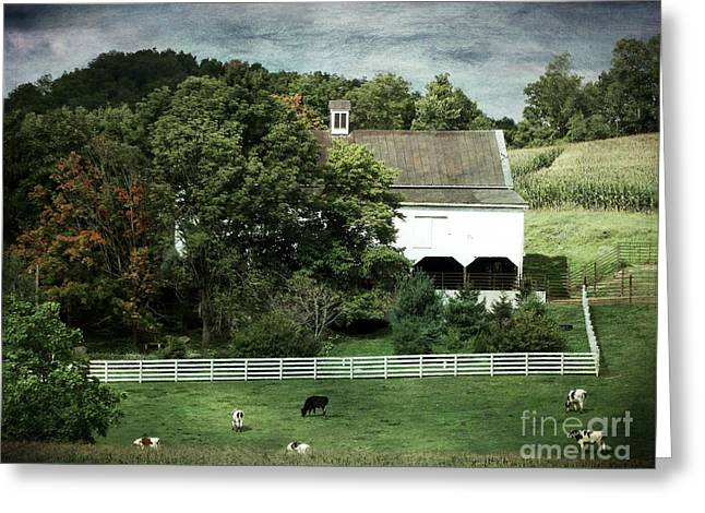 Amish Farm In The Fall With Textures Greeting Card