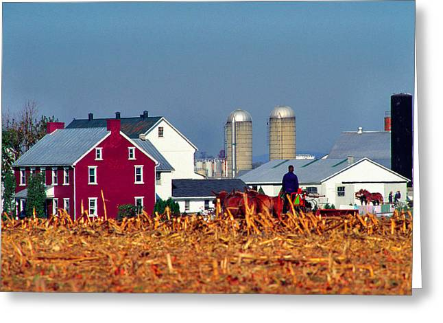 Amish Farm Greeting Card by Thomas R Fletcher