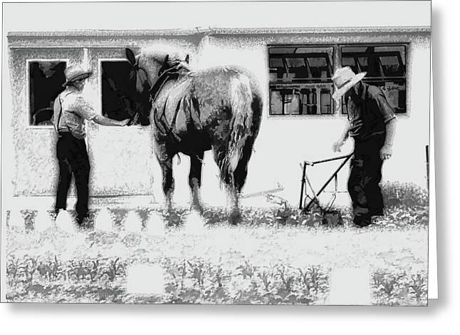 Amish Farming Black And White Greeting Card