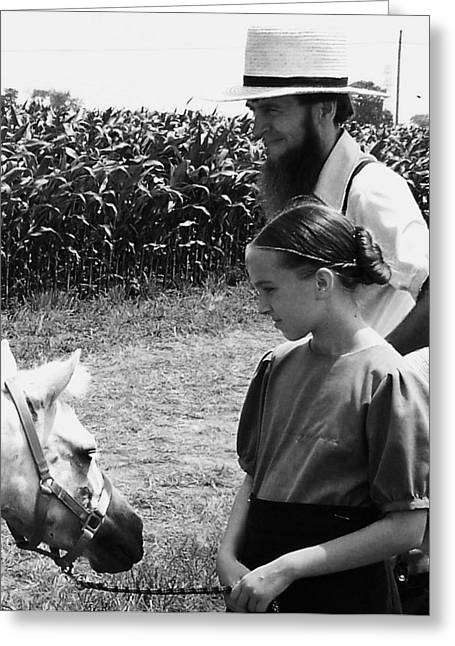 Amish Girl And Pony Greeting Card by Eric  Schiabor