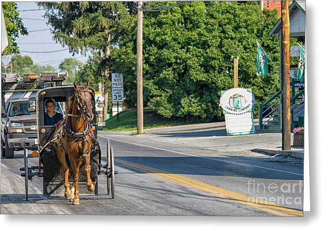 Greeting Card featuring the photograph Amish Girl On The Road by Patricia Hofmeester