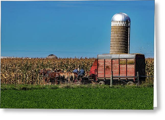Amish Harvest - Indiana Greeting Card
