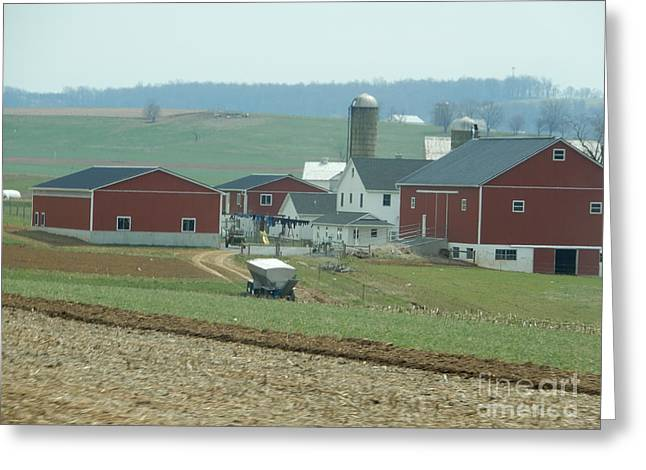 Amish Homestead 6 Greeting Card