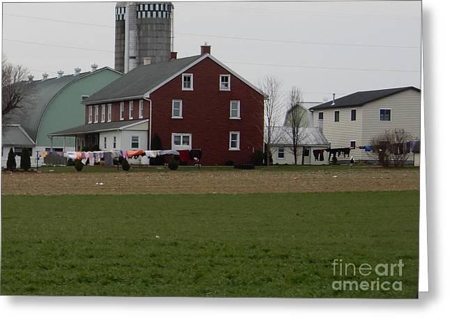 Amish Homestead 7 Greeting Card