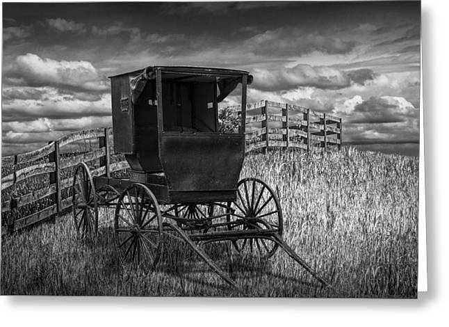 Amish Horse Buggy In Black And White Greeting Card by Randall Nyhof