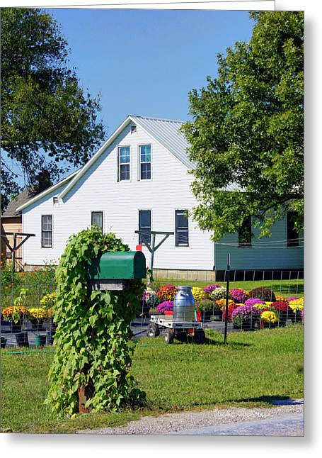 Greeting Card featuring the photograph Amish House With Mums by Cricket Hackmann