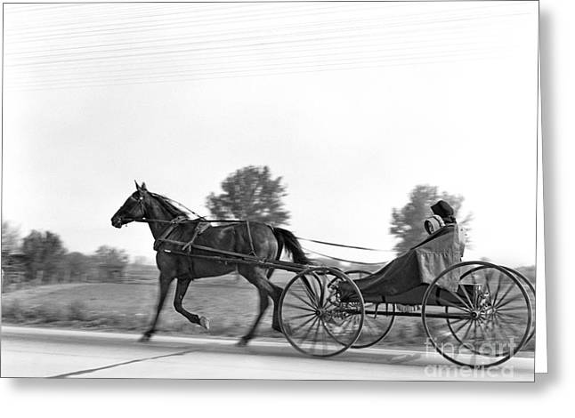 Amish In Horse-drawn Buggy, C.1930s Greeting Card