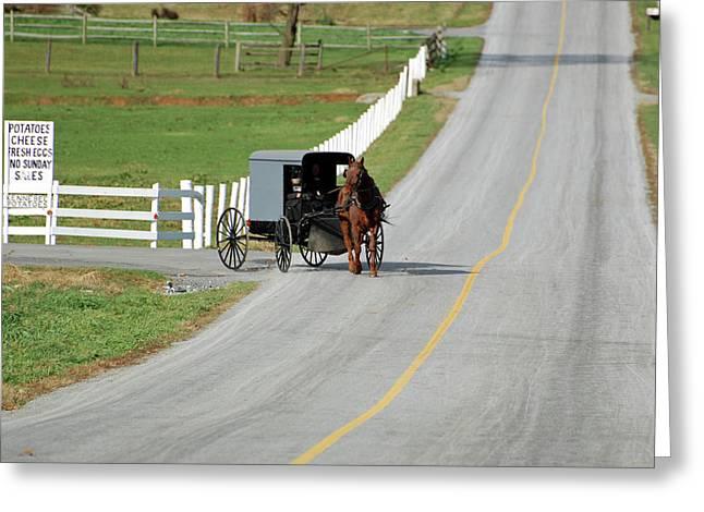 Amish Life Greeting Card by Joyce Huhra