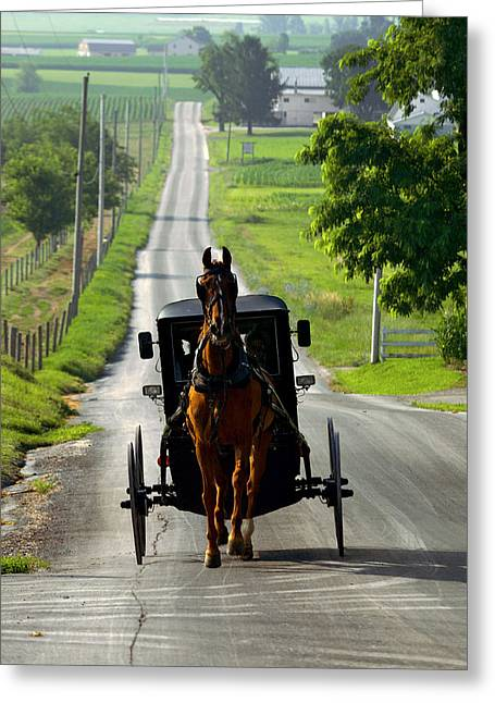 Amish Morning Commute Greeting Card by Lawrence Boothby
