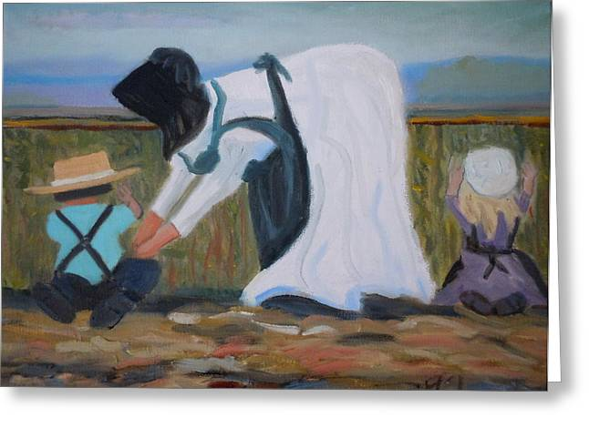 Amish Picking Peas Greeting Card by Francine Frank