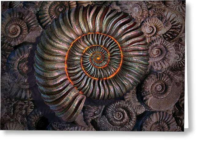 Ammonite 1 Greeting Card