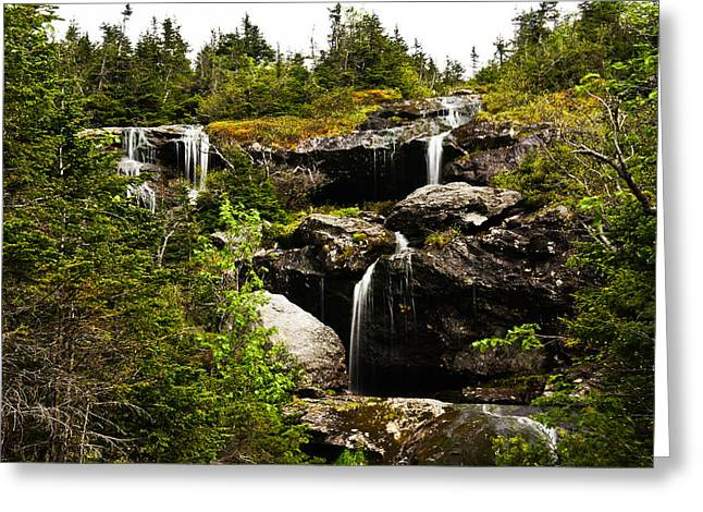 Ammonoosuc Falls Greeting Card