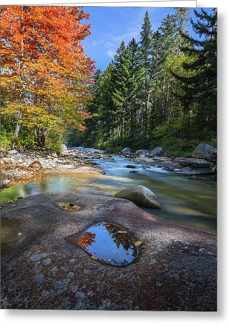 Ammonoosuc River Greeting Card by Bill Wakeley