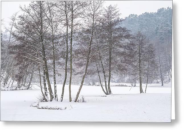 Among Winter Silence Greeting Card