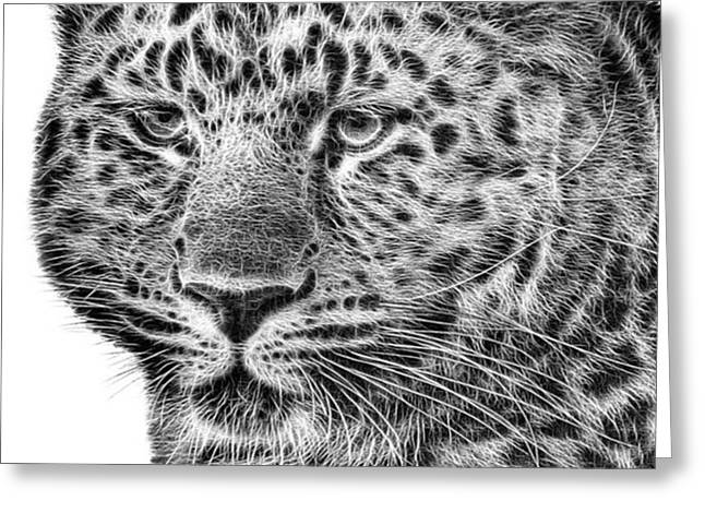 Amur Leopard Greeting Card by John Edwards