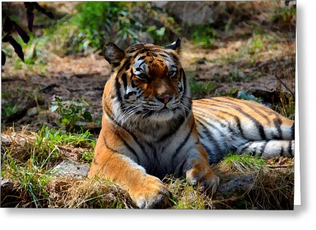 Greeting Card featuring the mixed media Amur Tiger 10 by Angelina Vick