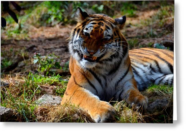 Greeting Card featuring the mixed media Amur Tiger 4 by Angelina Vick