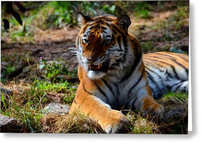 Greeting Card featuring the mixed media Amur Tiger 5 by Angelina Vick