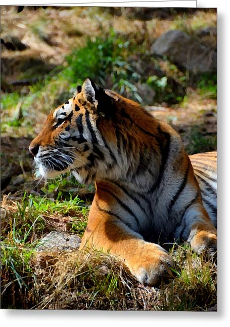 Greeting Card featuring the mixed media Amur Tiger 9 by Angelina Vick