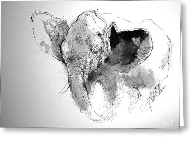 Amy The Saved Elephant Greeting Card