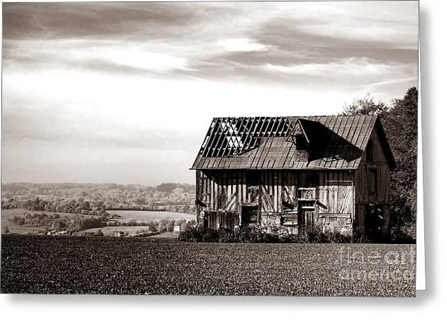 An Abandoned Farmhouse In Normandy Greeting Card by Olivier Le Queinec