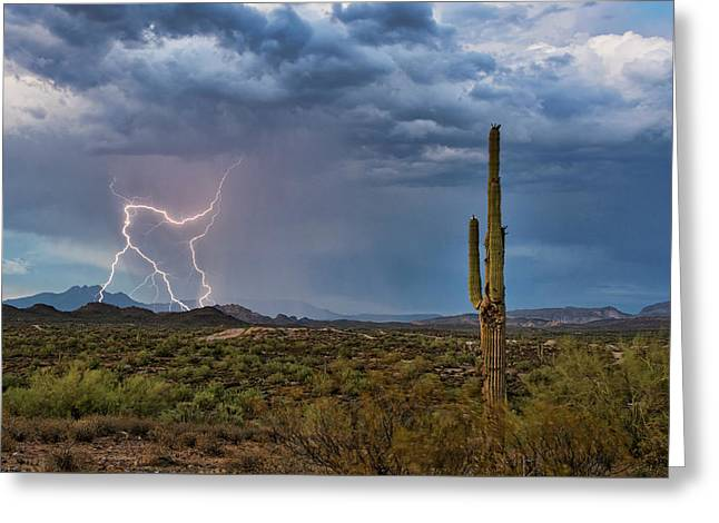 An Afternoon Monsoon  Greeting Card by Saija Lehtonen
