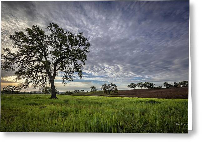 Greeting Card featuring the photograph An April Sunday Morning by Tim Bryan
