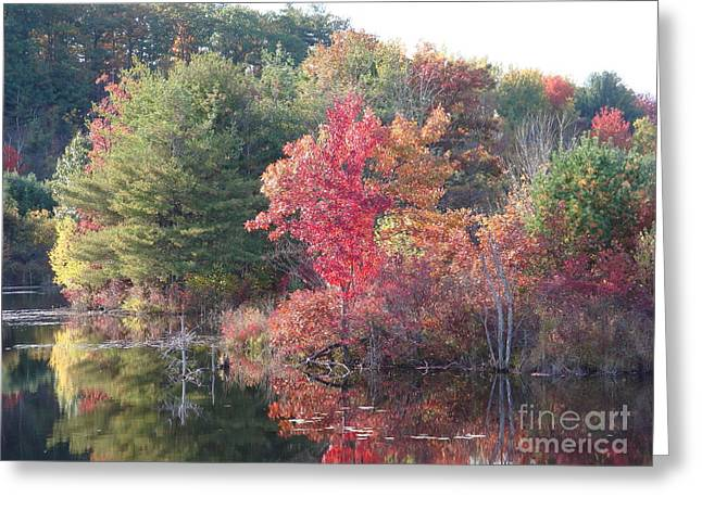 An Autum Day Greeting Card by Robyn Leakey
