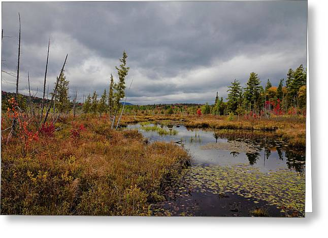 Greeting Card featuring the photograph An Autumn Afternoon On Raquette Lake by David Patterson