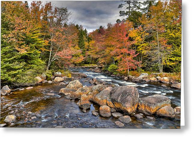 An Autumn Afternoon On The Moose River Greeting Card by David Patterson