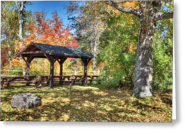 An Autumn Picnic In Maine Greeting Card by Shelley Neff