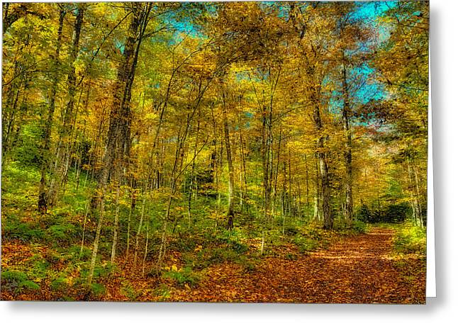 An Autumn Walk Greeting Card by David Patterson