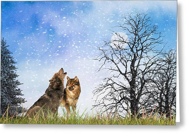 Greeting Card featuring the photograph An Early Winter Howl by Diane Schuster
