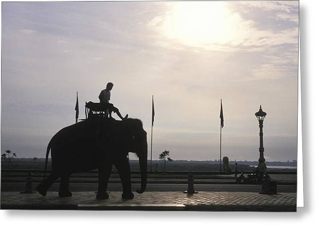 An Elephant At The Royal Palace Greeting Card
