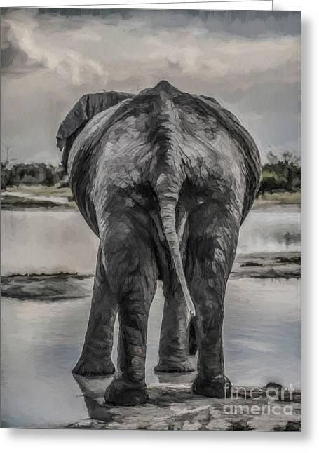 An Elephant's Tail Greeting Card by Liz Leyden