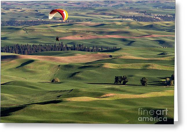 An Evening Flight Agriculture Art By Kaylyn Franks Greeting Card