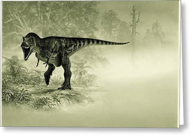 Tyrannosaurus Rex Greeting Cards - An Illustration Of A Tyrannosaurus Rex Greeting Card by Doug Henderson