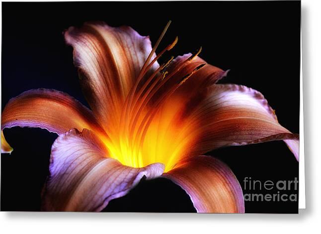 An Inner Glow Greeting Card by Arnie Goldstein