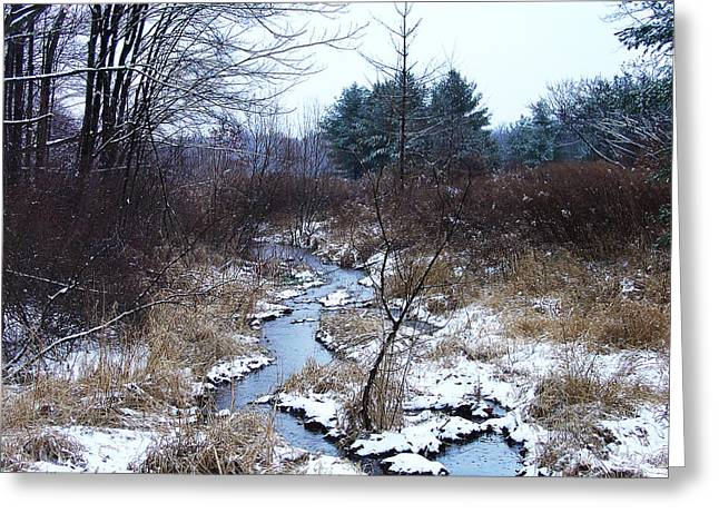An Intimate Motif In Palenville Greeting Card by Terrance DePietro