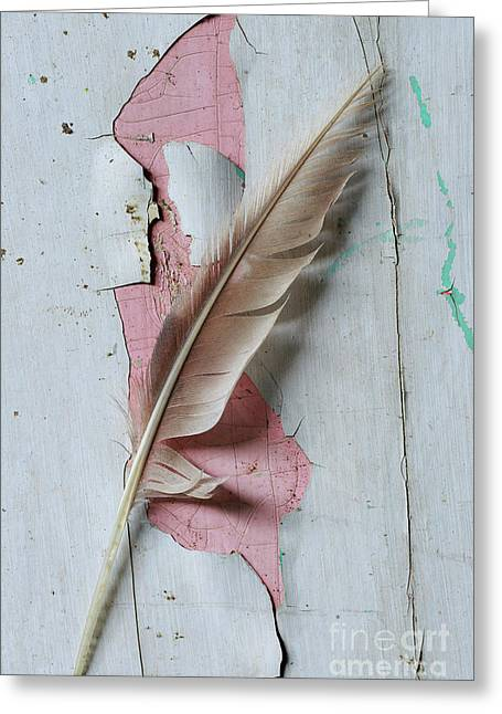 An Old Door And Feather Greeting Card by Masako Metz