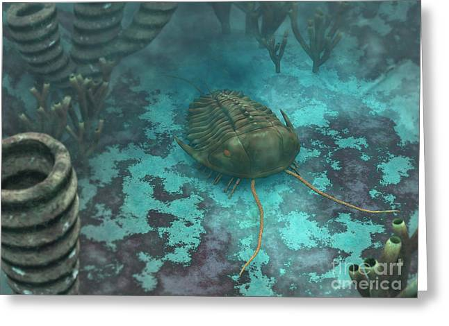 Invertebrates Digital Art Greeting Cards - An Olenoides Trilobite Scurries Greeting Card by Walter Myers