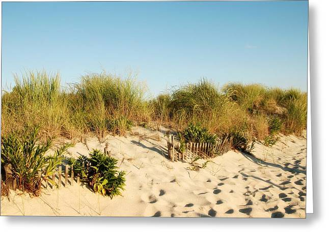 An Opening In The Fence - Jersey Shore Greeting Card