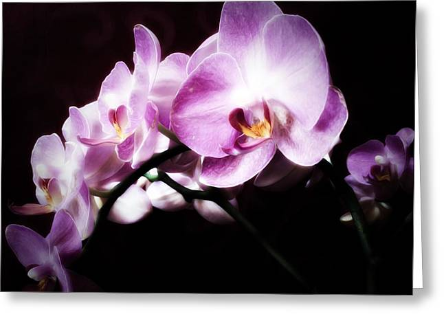 Greeting Card featuring the mixed media An Orchid For You by Gabriella Weninger - David