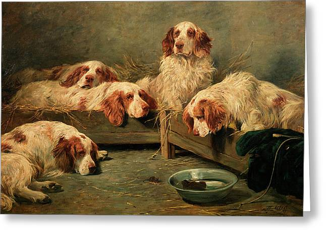 An Unexpected Visitor - Clumber Spaniels In A Kennel Greeting Card