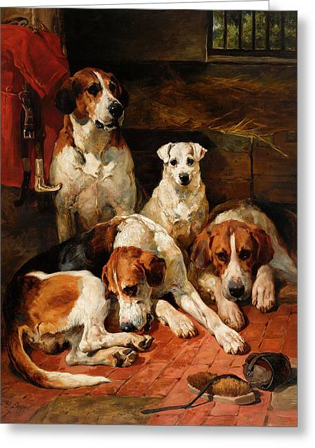 An Unexpected Visitor - Hounds And A Terrier In A Kennel Greeting Card