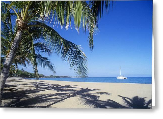 Anaehoomalu Bay Greeting Card by Greg Vaughn - Printscapes
