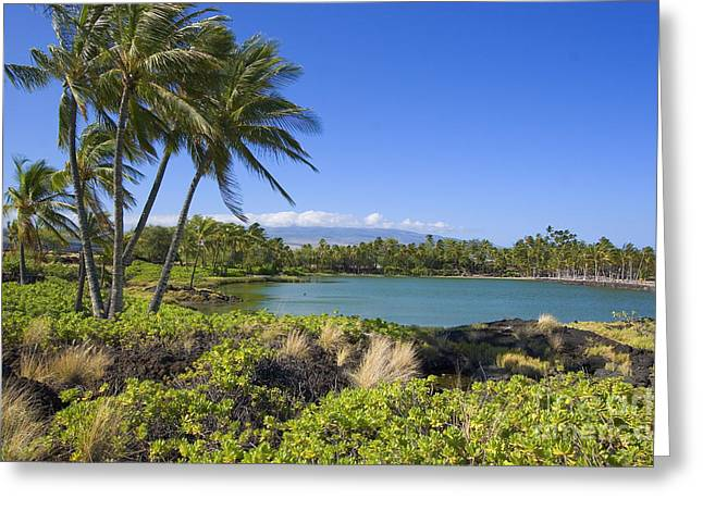 Anaehoomalu Bay Greeting Card by Ron Dahlquist - Printscapes