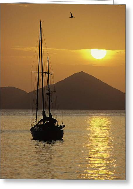 Anchored Ketch And Sunset Over Caribbean Greeting Card by Don Kreuter