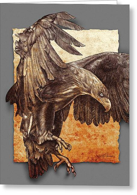 Conte Pencil Drawings Greeting Cards - Ancient  Eagle Greeting Card by Jim Turner